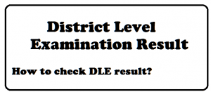 district level examination result