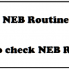 neb routine