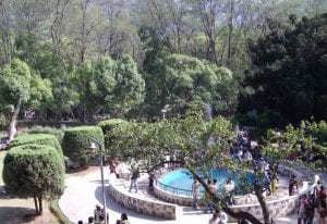 Top 10 best Picnic spots in Kathmandu Valley 17