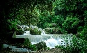 Top 10 best Picnic spots in Kathmandu Valley 18