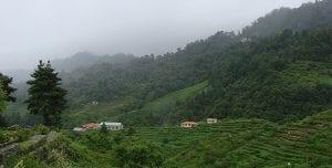 Top 10 Honeymoon destination in Nepal 6