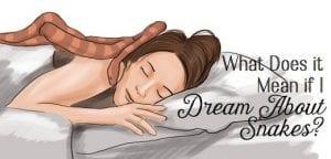 Interpretation of Dream in Nepali society 2