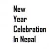 new year celebration in nepal