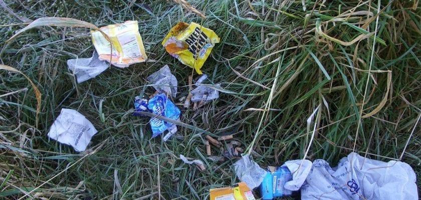 australia dirty by nepalese holi